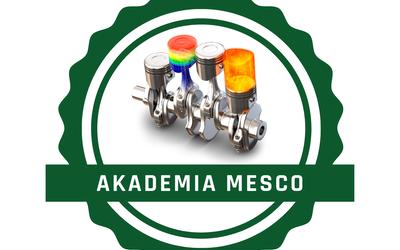 Akademia MESco
