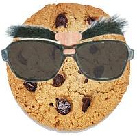 Polityka plików cookie w serwisie MESco