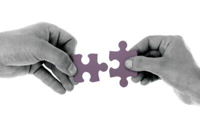 Połączenia między siatkami